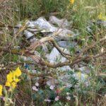 A nord di Scalzagallo ad Avezzano, dove i rifiuti convivono con la natura