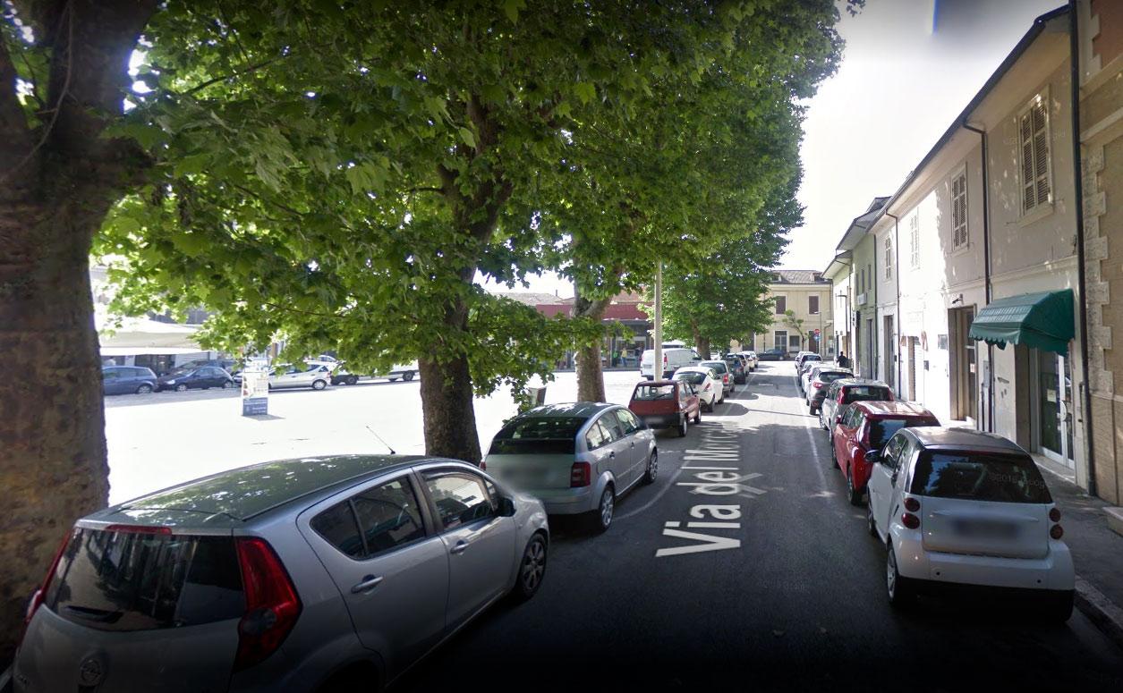"""Piazza del Mercato, parla l'ex maggioranza, """"alberi da tagliare perchè a rischio era l'incolumità dei cittadini"""""""