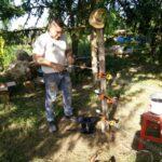 """WWF Progetto """"Orso2x50"""" distribuiti recinti per la tutela di api e animali da allevamento"""