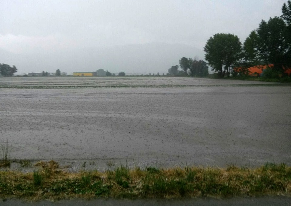 Coldiretti, ammontano a milioni di euro i danni provocati all'agricoltura