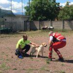 Grande partecipazione a Magliano per l'evento dedicato ai cani che salvano vite