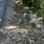 In pessime condizioni il percorso pedonale di Pietraquaria