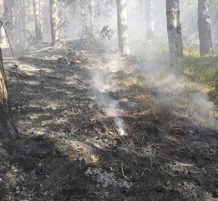 """Continuano le operazioni sull'incendio alla porte del Parco Nazionale. Ancora chiuso il valico di Forca d'Acero. La protezione civile: """"bruciati molti ettari di bosco"""""""