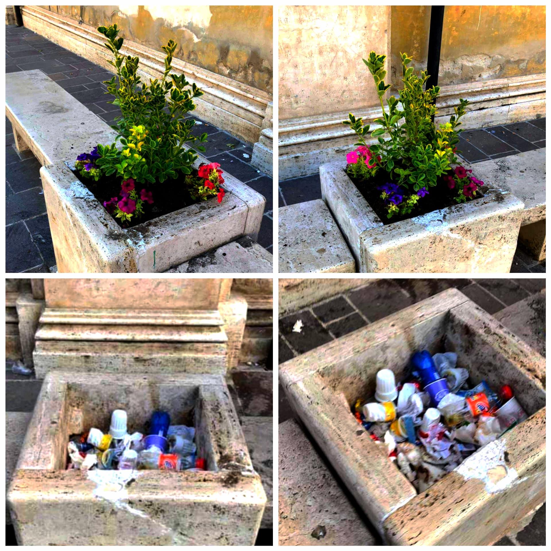 Dall'immondizia ai fiori, il cambiamento delle panchine in via Corradini