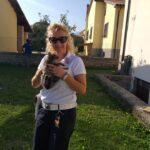 Gattino intrappolato da 10 giorni in una canna fumaria, salvo grazie ai Vigili Urbani di Trasacco