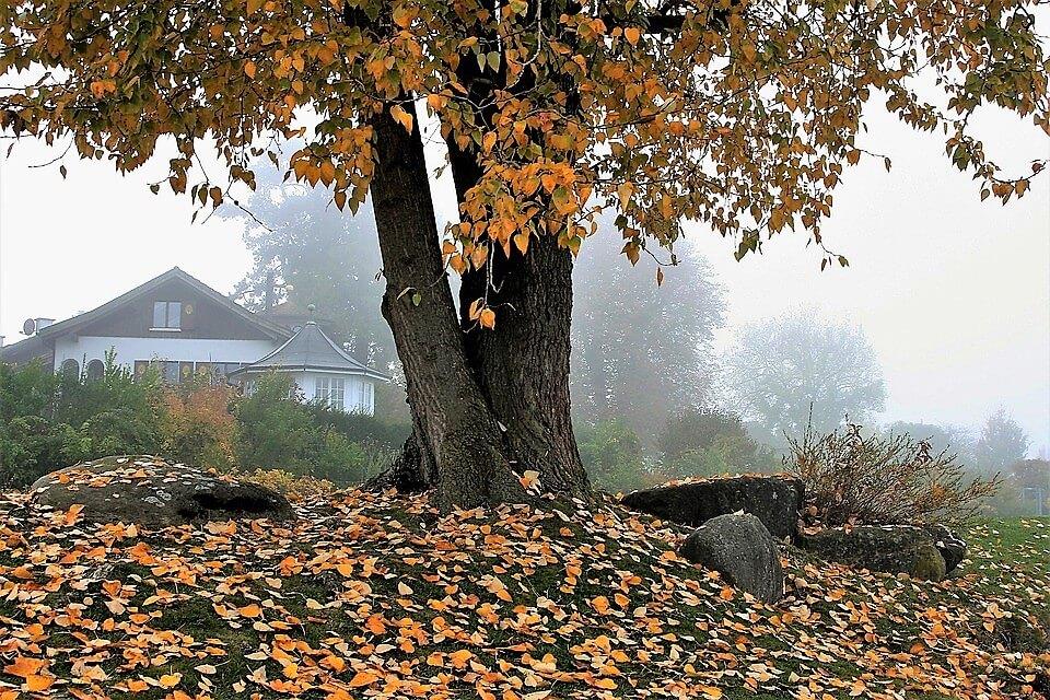 L'autunno è in arrivo, come divertirsi stando a casa!
