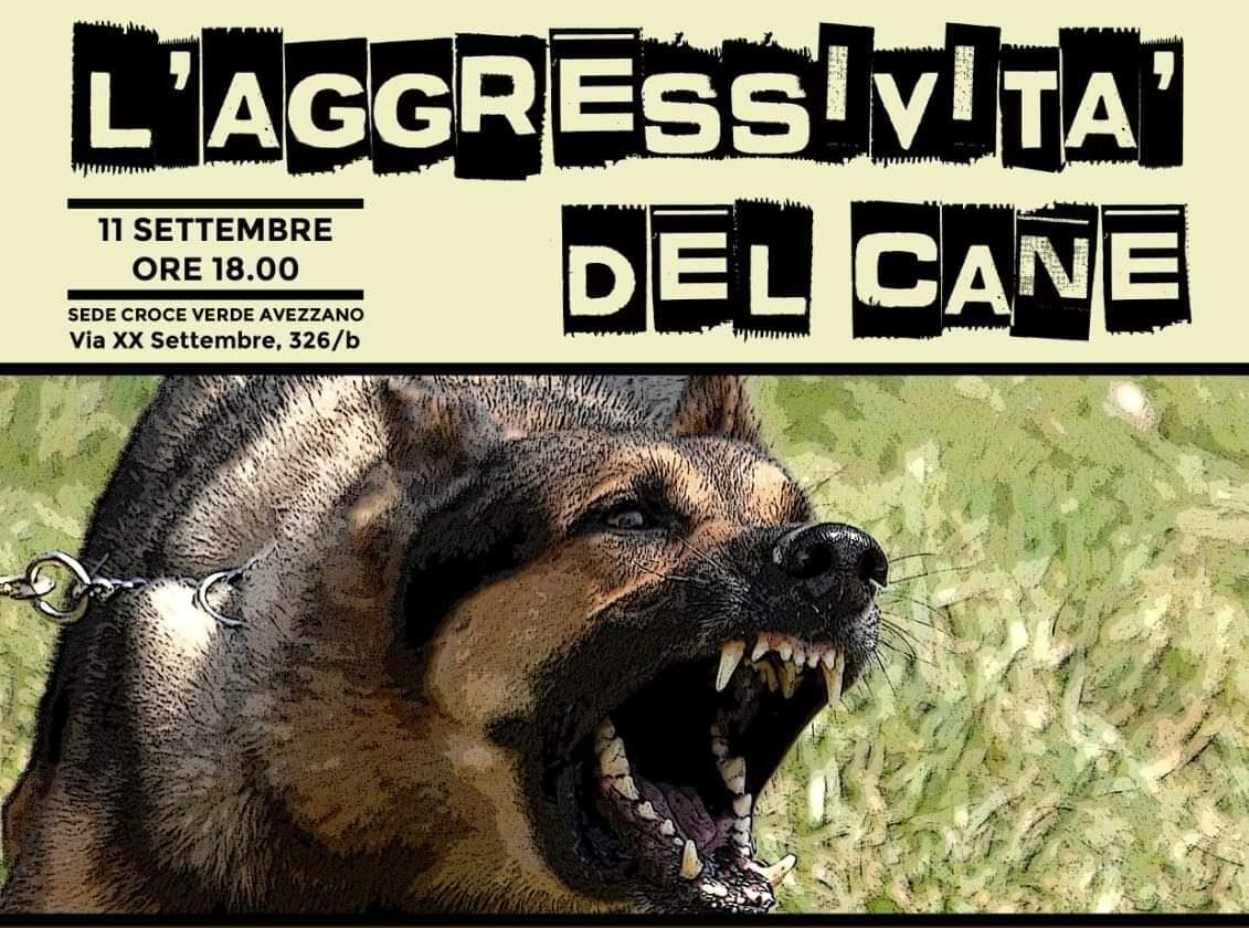 Seminario sull'aggressività canina domani presso la sede della Croce Verde