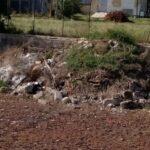 Rifiuti di ogni genere, preoccupazione per alcuni residenti di Caruscino