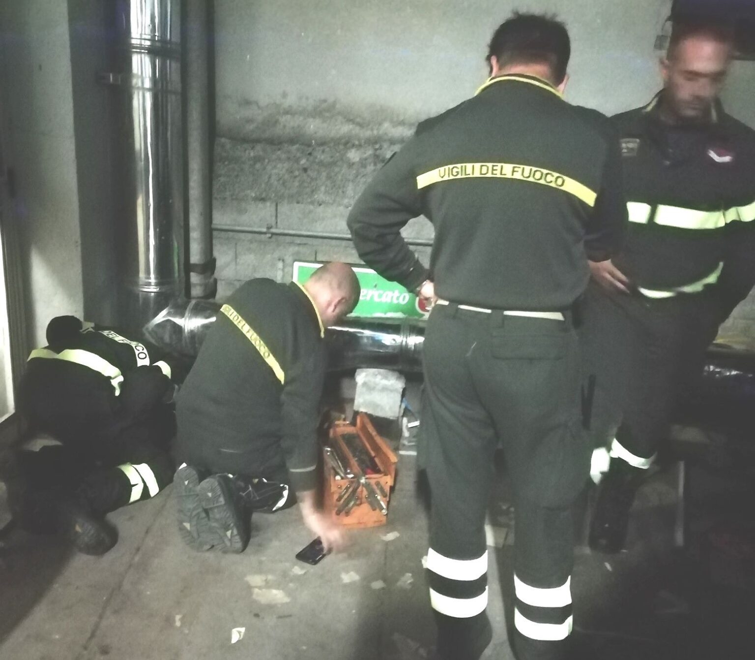 Trasacco, gattino intrappolato nella canna fumaria salvato dai Vigili del Fuoco... e due
