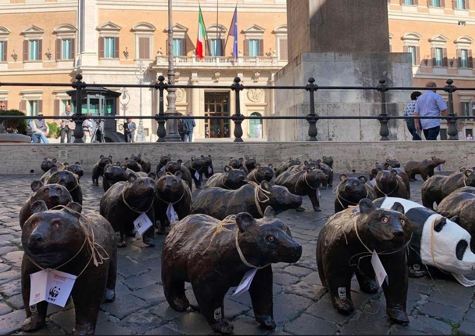 Un flash-mob con 50 orsetti di cartapesta davanti alla Camera dei deputati in piazza Monte Citorio