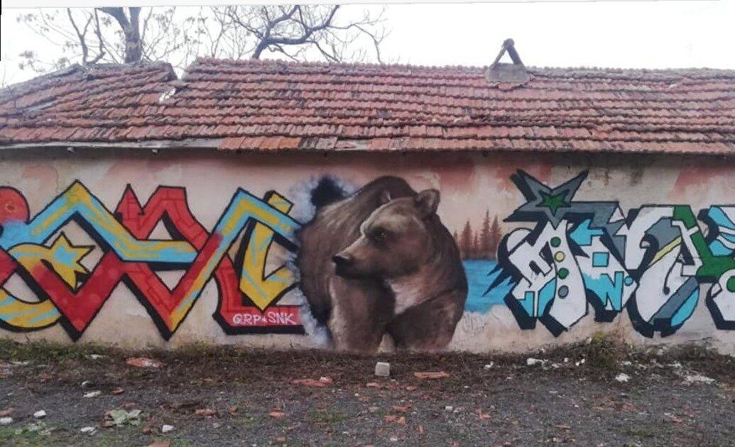 """Un murales con l'orso marsicano, un regalo a sorpresa per i giovani dell'associazione """"Sparnasium"""" di Gioia dei Marsi"""