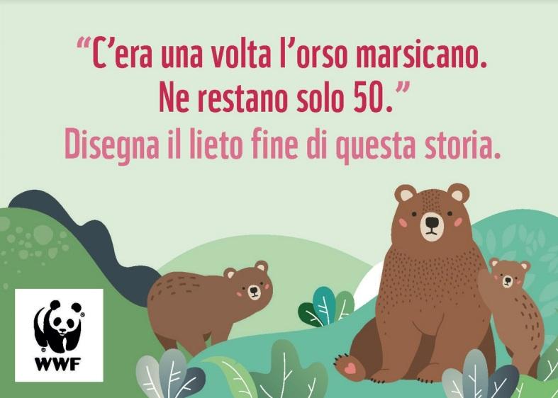Il WWF lancia un concorso sull'Orso marsicano rivolto ai più piccoli