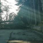 Grande impegno dei Vigili del fuoco per interventi causati dal forte vento | Avezzano ed Ovindoli con i danni maggiori