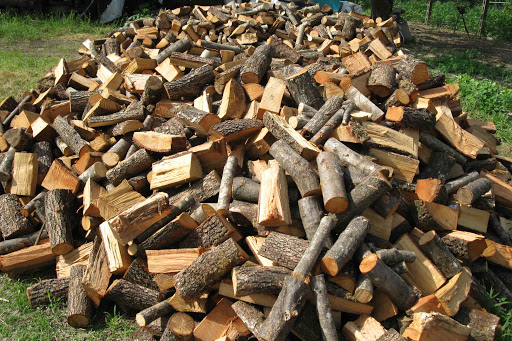 Vendita di legna a uso civico a Morino