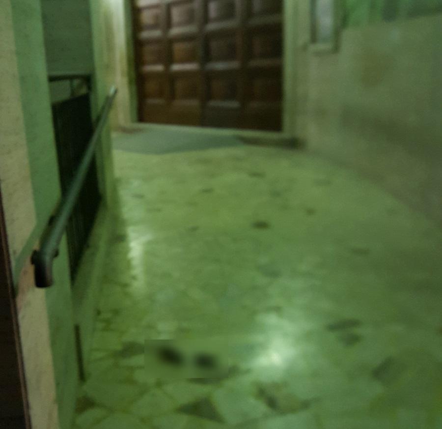 """Escrementi umani davanti il Liceo Classico """"A. Torlonia"""""""