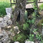 Vandali in azione a Scurcola Marsicana: devastata l'oasi di Fonte Arnici