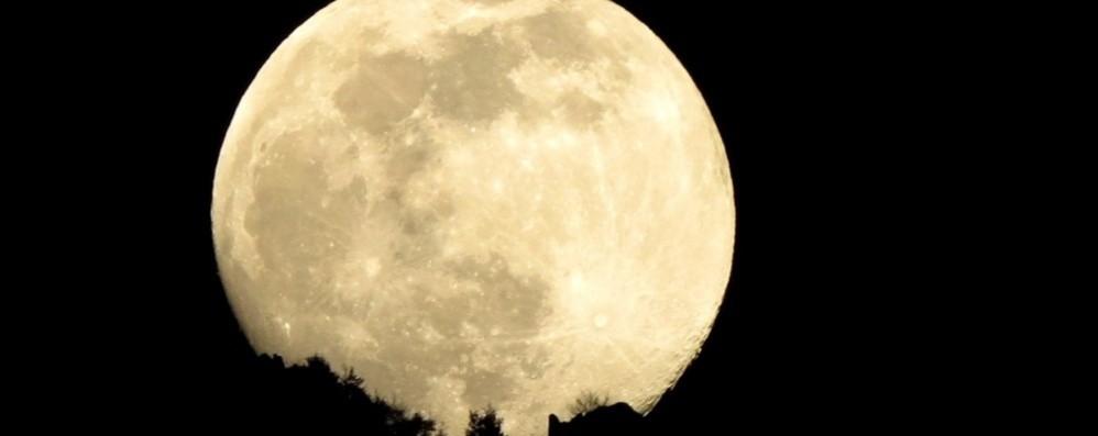 Il 7 maggio arriva la Super Luna, l'ultima del 2020