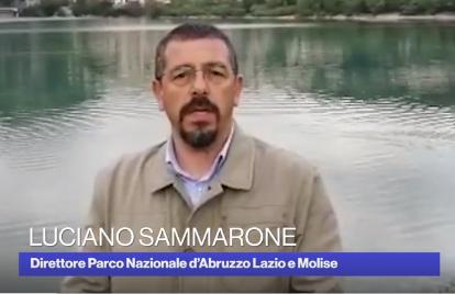 """Giornata Mondiale dell'Ambiente. Il Direttore del PNALM Sammarone a Radio1 Rai: """"In questo momento abbiamo l'occasione di riscoprire un approccio più rispettoso verso la Natura"""""""
