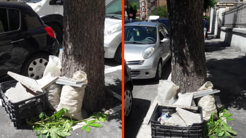 """Ristruttura casa e abbandona """"gli scarti"""" accanto ad un albero"""