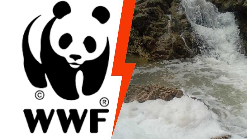 Fiume Liri, per il WWF Abruzzo Montano, fare i controlli sulla qualità delle acque a valle di Balsorano non serve a nulla
