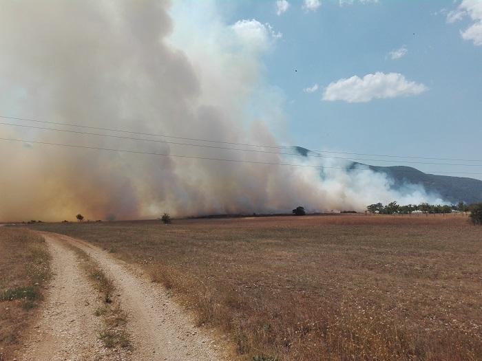 Collelongo, emanata l'Ordinanza in materia di antincendio boschivo