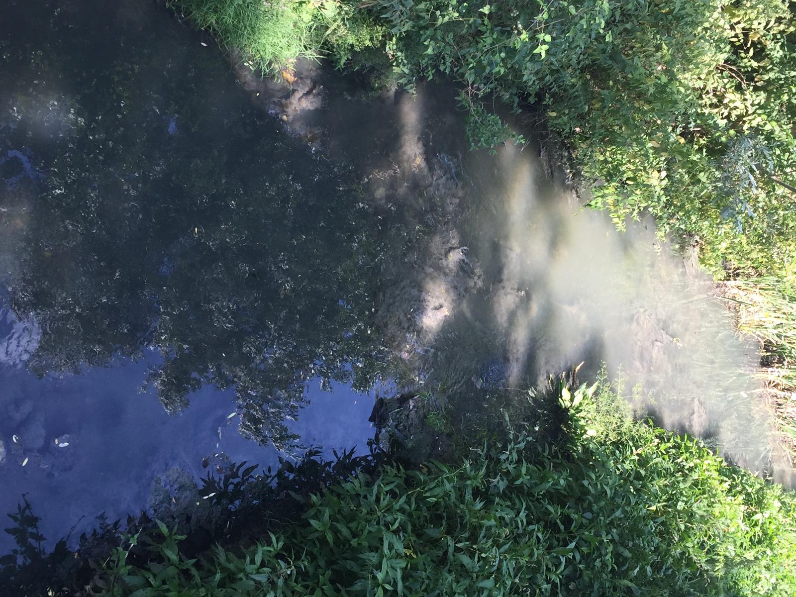 Scarico fiume Imele, acque torbide e maleodoranti, Fare Verde e NOVPC segnalano all'ARTA
