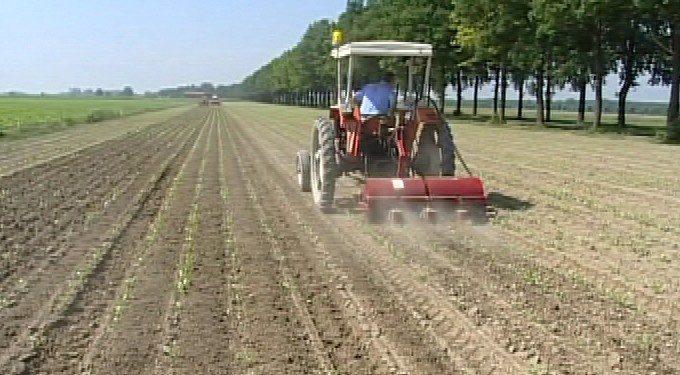 Assegnazione suppletiva di carburanti agricoli agevolati agli imprenditori agricoli del Fucino