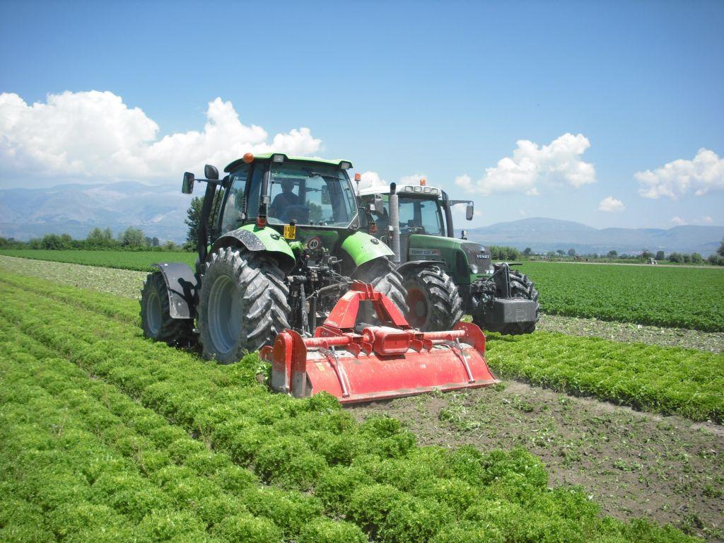Fucino, crollo dei prezzi e perdite del 30% del PIL agricolo, danni di 130 milioni di euro per le aziende agricole
