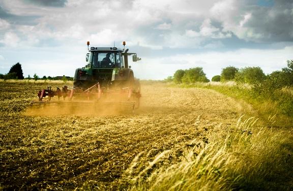 Pubblicato il Bando ISI Agricoltura 2019-2020, finanziamenti a fondo perduto alle imprese agricole abruzzesi