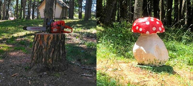 Magia a Ovindoli: il ceppo di un albero è stato tramutato in un fungo colorato