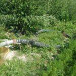 Fucino, i Carabinieri Forestali denunciano un agricoltore per furto di acqua