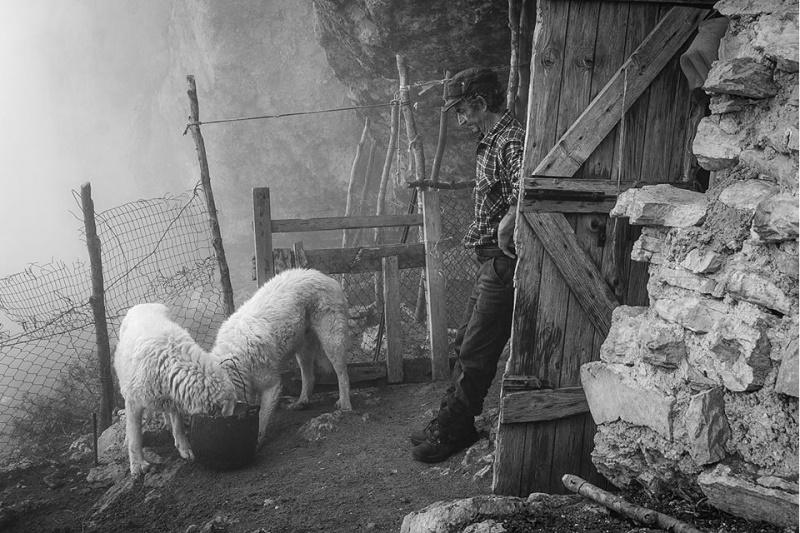 Il racconto fotografico di Mauro Cironi sull'ultimo pastore della Majella premiato al Banff Mountain Film Festival