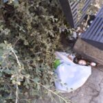 Piazza Corbi ad Avezzano, rifiuti a terra e panchine spostate