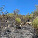Incendio tra Pietrasecca e Carsoli, il rapido intervento di Protezione Civile e Vigili del Fuoco scongiura il peggio