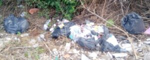 """Nuovi rifiuti in via Papacqua esattamente dove il Comune li aveva fatti rimuovere. De Maio, Fare Verde: """"Pulire non basta"""""""