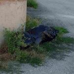 Degrado e rifiuti abbandonati in zona McDonald's ad Avezzano, i residenti protestano