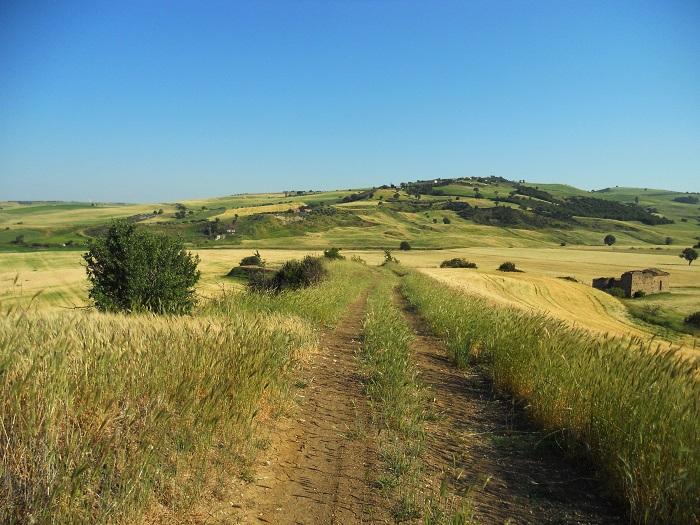 La Compagnia dei Cammini ed Ecotour rilanciano un antico cammino: la via del tratturo