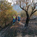 Incendio in località Le Fosse di Balsorano. Domate con tempestività le fiamme