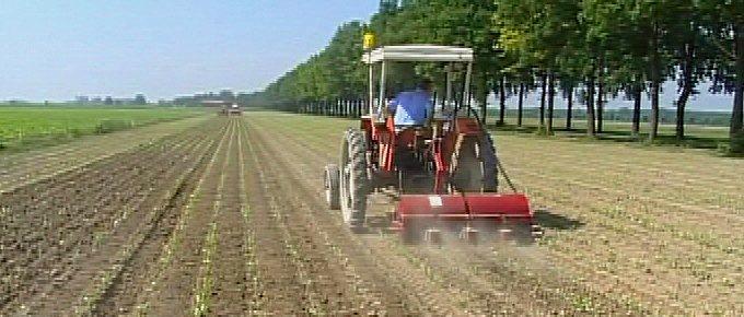 Assegnazione suppletiva di carburante agricolo agevolato per gli agricoltori del Fucino