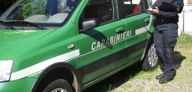 Abbandono di rifiuti a Scurcola Marsicana, individuati due soggetti dai Carabinieri Forestali