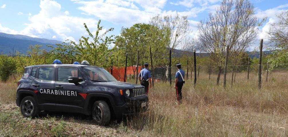 Un'altra piantagione di marijuana scoperta a Paganica. I carabinieri arrestano un cittadino italiano