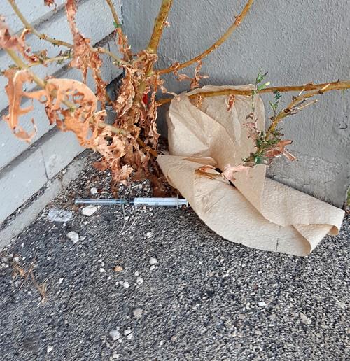 Trovate altre siringhe abbandonate ad Avezzano