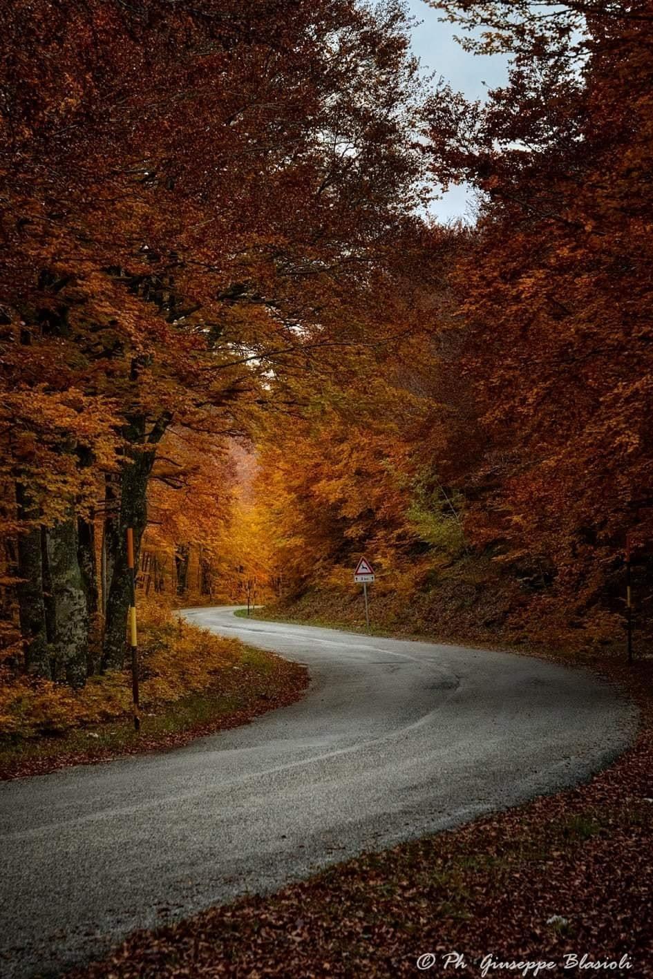 Bisegna, la bellezza dell'autunno in uno scatto del fotografo Giuseppe Blasioli