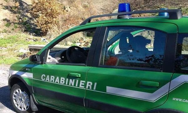 Fare Verde: a Balsorano incivili puniti grazie ai Carabinieri Forestali