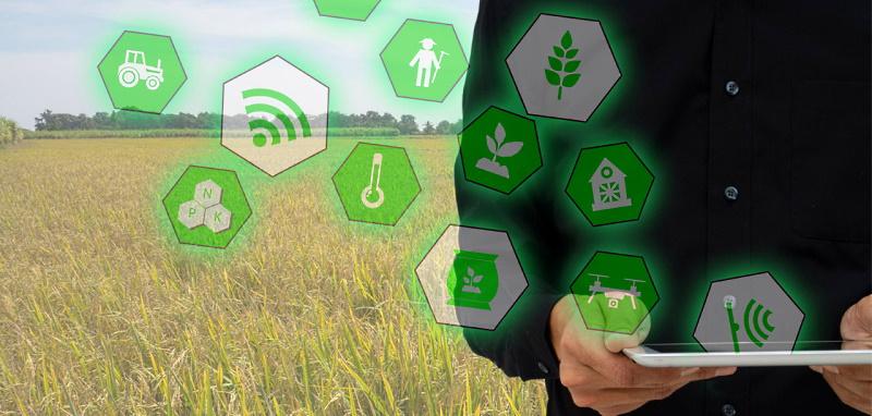 """Agricoltura 4.0. Banca dati regionale e due app per l'iniziativa """"Compra abruzzese"""""""