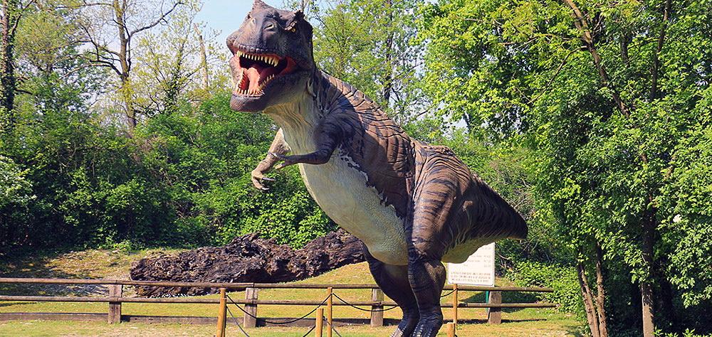 Affidato alla Croce Verde di Avezzano il servizio di vigilanza del Dino Park