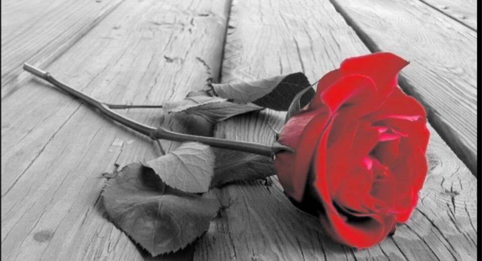 """""""E venne l'inverno..."""", la poesia della poetessa marsicana Marina De Michele per la Giornata Internazionale contro la violenza sulle donne"""