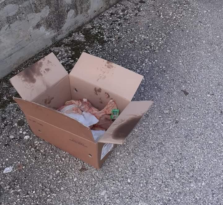 Atto di inciviltà a Castellafiume, uno scatolone pieno di scarti di carne cruda abbandonato nel cimitero