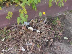Avezzano, piazzetta ridotta a discarica da alcuni ragazzi, i residenti la ripuliscono