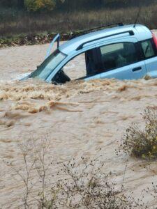 Finisce in un canale pieno d'acqua, lei si salva ma i cani sono ancora in macchina (Video)